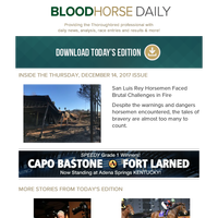 BloodHorse Daily for Thursday, December 14
