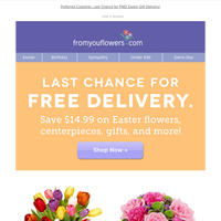 Alert! Free Delivery ($14.99 value) Expires TONIGHT