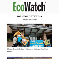 Dem Debate, Renewables Beat Coal, Oil Leak Update, Intense Heat Wave, Hybrid Whale 'Narluga', EcoWatch's 'Best of Summer' Photo Contest...