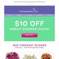 Monthly Special: Affordable Premium Flowers!