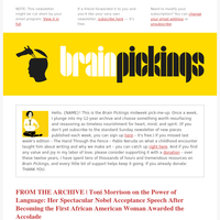 Awarded Newsletters, Email Campaigns, Marketing Emails