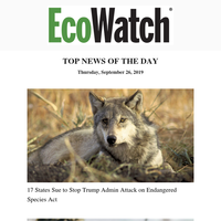 States Sue Trump Endangered Species Act, Microplastics in Tea,  Hydrogen Car, Clean Energy Week, Zimbabwe Water Crisis, Endless Summer, Oceans Warming