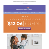 Time Is UP! Your [$12.06] credit EXPIRES at midnight