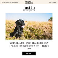 How to Adopt Dogs From the TSA