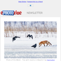 Nikon Z 50 Review, Photography Christmas Gift Finder, Win Fantastic Prizes!