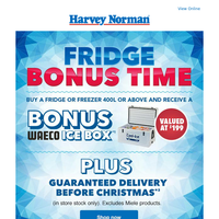 Buy a Fridge this Christmas and get a great bonus*!