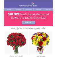 Best Value Flowers from $19.99