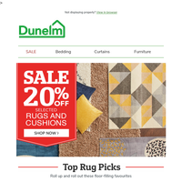 Shaggy Newsletters, Email Campaigns