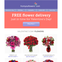 Save 14.99 with Free Valentine's Delivery! Expires soon.
