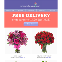 Final Hours: FREE Delivery Ends TONIGHT