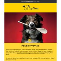 February News! Dog-friendly pancakes 🐶🥞 UK's oldest dog adopted! 🇬🇧🐶