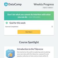 Your Data Science Progress Report 📊