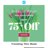 Goodbye Winter, Hello Spring Savings!