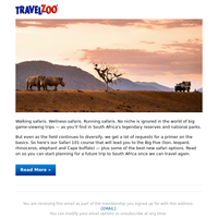 Dream Now, Go Later: Epic South Africa Safaris