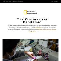 CORONAVIRUS SPECIAL EDITION: Can DIY masks really protect you?