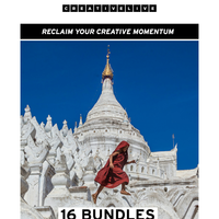 Oops, let's try this again... 16 bundles for $49