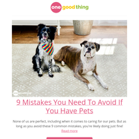9 Mistakes You Need To Avoid If You Have Pets
