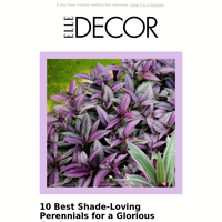 It's Garden Week on Elle Decor: Advice, Inspiration, and More!