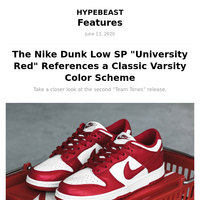 The Nike Dunk Low SP \