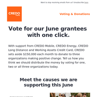 Happy Father's Day! Don't forget to vote for our June grantees