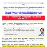 Elizabeth Warren's plan to SAVE the 2020 Election >>