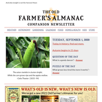 Corn Moon tonight!, September gardening tips and weather
