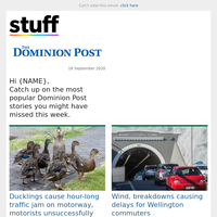 Ducklings cause hour-long traffic jam on motorway, motorists unsuccessfully attempt to shoo birds on