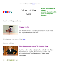 ★ Video of the Day & Quote of the Day - by Flixxy.com - Happy Goats