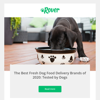 Has Blackie tried delivery dog food yet?