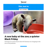 This Just In: A new baby at the zoo; a quieter Black Friday