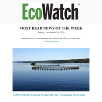 MOST READ NEWS OF THE WEEK