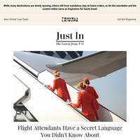 Flight Attendants Have a Secret Language You Didn't Know About
