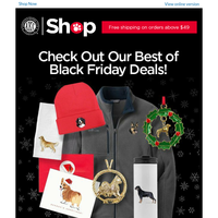 Last Day for Our Best Black Friday Deals!