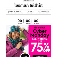 [1]Final Reminder: 75% Off Cyber Monday Is Ending...