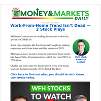 Work-From-Home Trend Isn't Dead — 2 Stock Plays