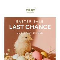 ⌛️Mega Easter Sale Ends Tonight