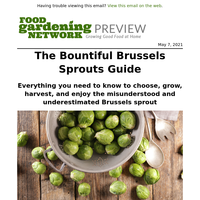 It's time you give Brussels sprouts a chance
