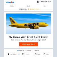 ⌛💰 Great Spirit Deals: Fly Round Trip from $94.99