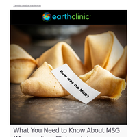 MSG: All You Need to Know
