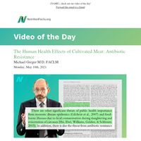 The Human Health Effects of Cultivated Meat: Antibiotic Resistance