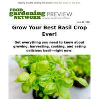 Grow Your Best Basil Crop—Ever!