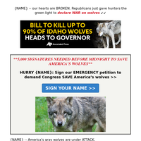 Hunters are declaring WAR on America's wolves →→