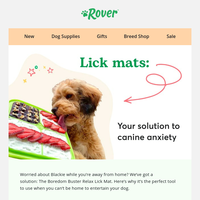 Try a lick mat to help combat your dog's separation anxiety