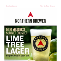 NEW Lime Tree Lager: End Summer with Citrus