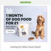 1 Month Of Dog Food For £1, 100% tailored to your dog