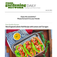 New England Lobster Roll Recipe, Foolproof Tips for Pressure Canning Apples, and Homemade Strawberry Chocolate Chip Sorbet
