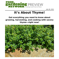 Get Tips to Grow Your Best Thyme—Now!