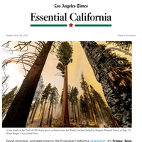 Essential California: Therapists-to-be face long waits