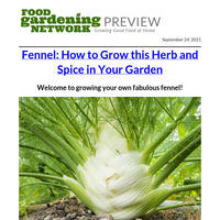 Get your guide to growing fennel today!