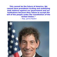"Rep. Jamie Raskin: ""This cannot be the future of America"""